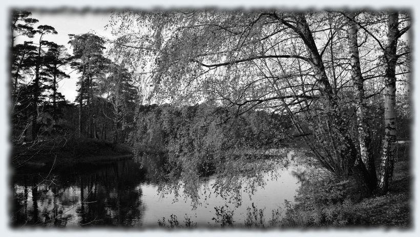 Осень. Подмосковная река. Старое фото